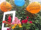Le collectif buclos à la «kermesse des fleurs»